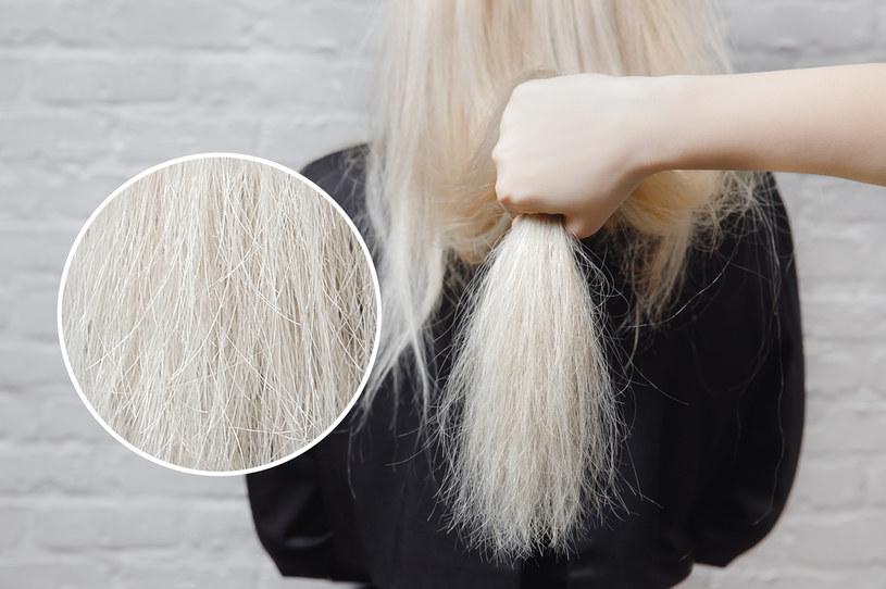 Rozjaśniacz nałożony na włosy narusza ich naturalną strukturę, otwiera łuski i wypłukuje pigment /123RF/PICSEL