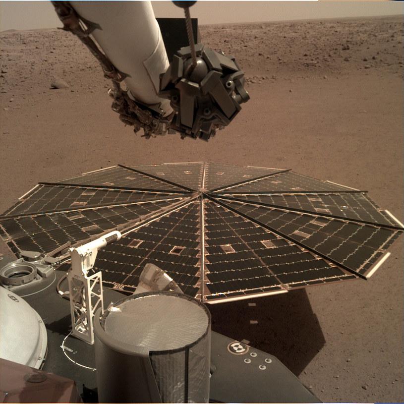Rozłożony panel słoneczny misji InSight /NASA
