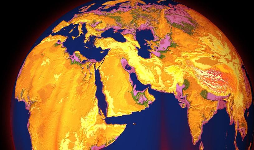 Rozmiar gryzoni i zmiany klimatyczne mogą mieć ze sobą bardzo dużo wspólnego. Czy to kolejny ze znaków nadchodzącej zagłady? /123RF/PICSEL