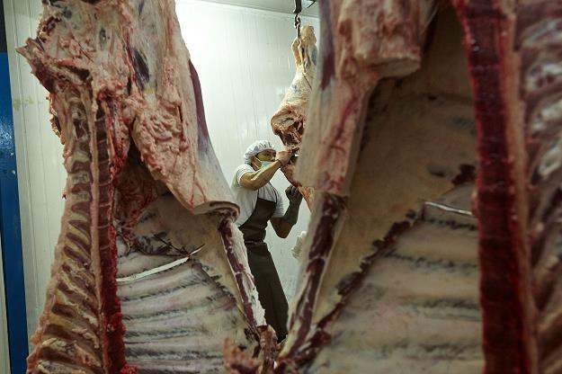 Rozpoczęły się kontrole eksporterów wędlin do Rosji. Fot. Ed Wray /Getty Images/Flash Press Media