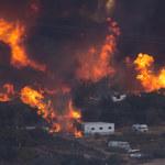 Rozszerza się potężny pożar lasów w Kalifornii
