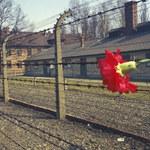 """Rozszyfrowano zapiski więźnia Auschwitz. """"Byli upychani jak sardynki, cierpieli przez kilka minut"""""""