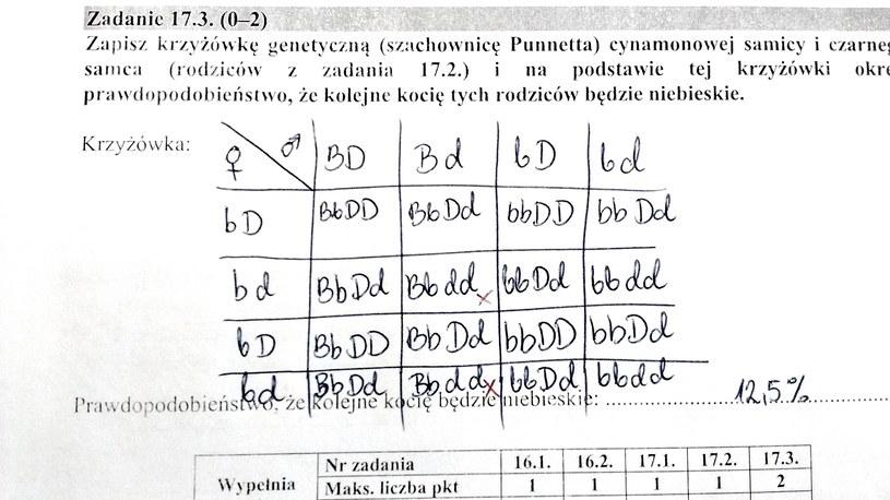 Rozwiązanie zad. 17.3 /INTERIA.PL