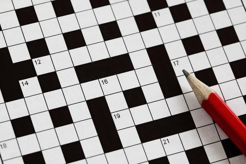 Rozwiązywanie krzyżówek ma dobry wpływ na nasz mózg /123RF/PICSEL