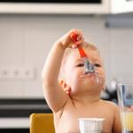 Rozwój intelektualny dziecka po 1. roku życia