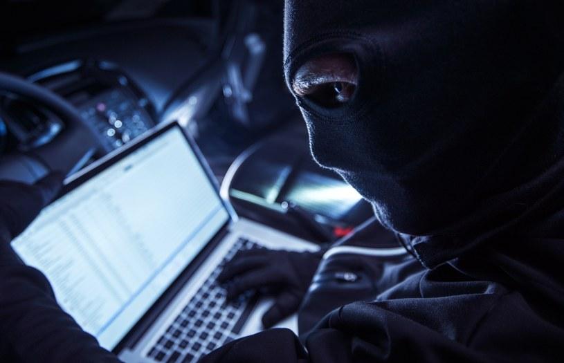 Rozzłoszczony haker ujawnił poufne dane /123RF/PICSEL