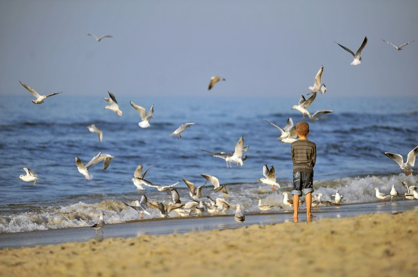 Ruchome wakacje byłyby korzystne dla polskiej turystyki - mówią zwolennicy pomysłu; zdj. ilustracyjne /LECH GAWUC/REPORTER /East News