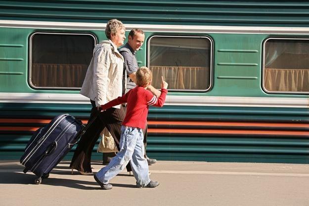 Ruchy cenowe czynią rynek kolejowy mało przewidywalnym /©123RF/PICSEL