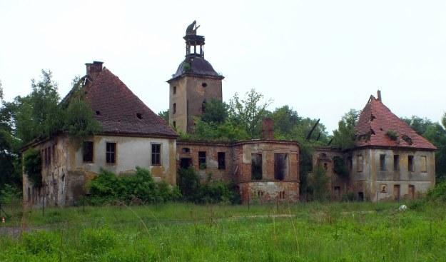 Ruina pałacu w Żarskiej Wsi /autor /Odkrywca