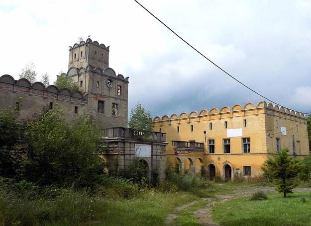 Ruiny pałacu w Ratnie Dolnym od strony folwarku – stan obecny / Dariusz Pietrucha /Odkrywca