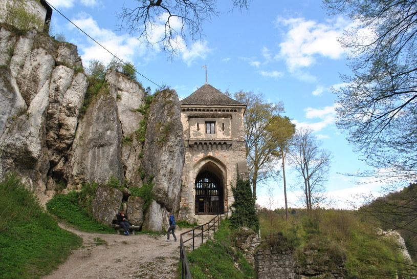 Ruiny zamku w Ojcowie /Justyna Tomaszewska /INTERIA.PL
