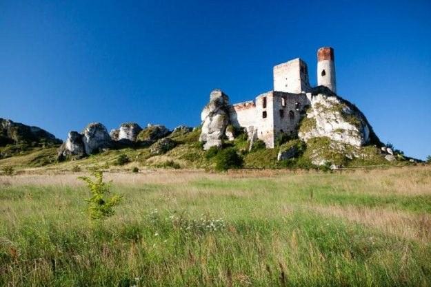 Ruiny zamku w Olsztynie /123RF/PICSEL