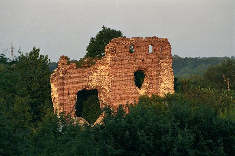 Ruiny zamku z Bochotnicy /Agencja FORUM