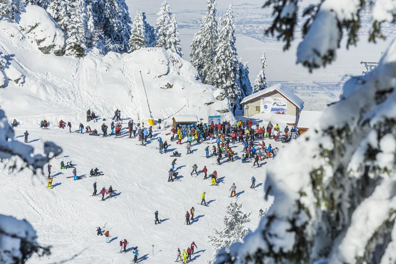 Rumuńskie Karpaty kuszą narciarzy /123RF/PICSEL