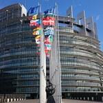 Rusza kampania przed eurowyborami. Gdańszczanie wybiorą prezydenta