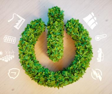 Rusza kolejny szczyt klimatyczny Togetair