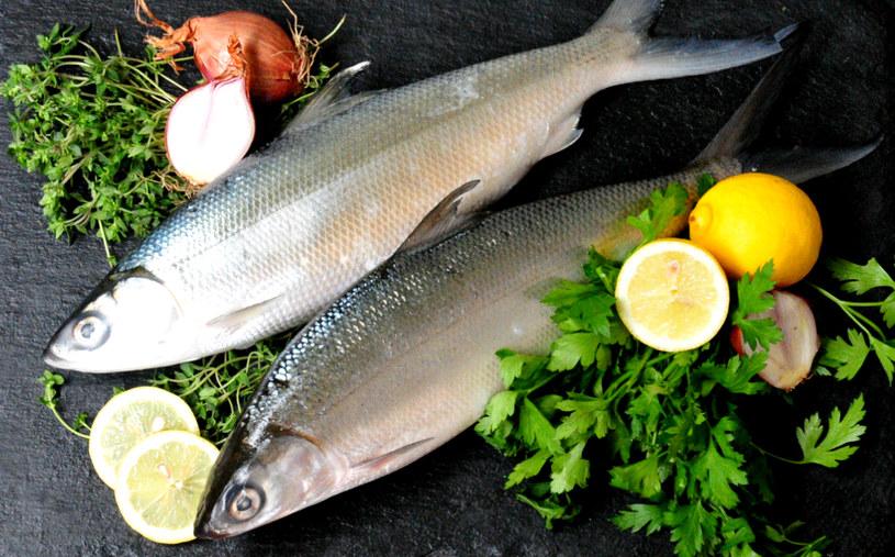ryby na dietę /© Photogenica