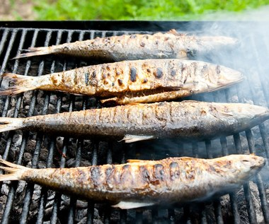 Ryby najlepsze do grillowania