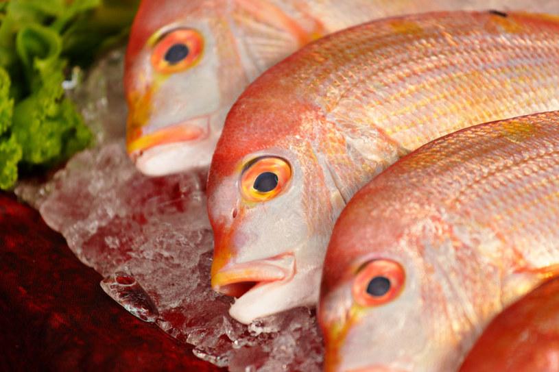 Ryby są cennym produktem żywieniowym, ale niektóre gatunki owiane są złą sławą /123RF/PICSEL