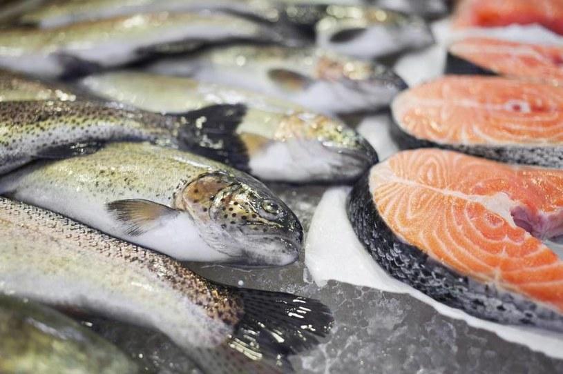 ryby zimnolubne /© Photogenica