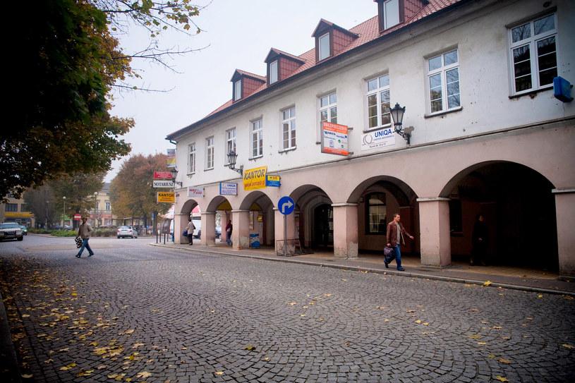 Rynek w Oświęcimiu jeszcze przed ścięciem drzew /Karolina Sekuła /Agencja FORUM