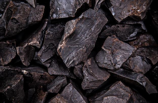 Rynek w Polsce jest chory. Czy ceny węgla szybko wzrosną? /©123RF/PICSEL