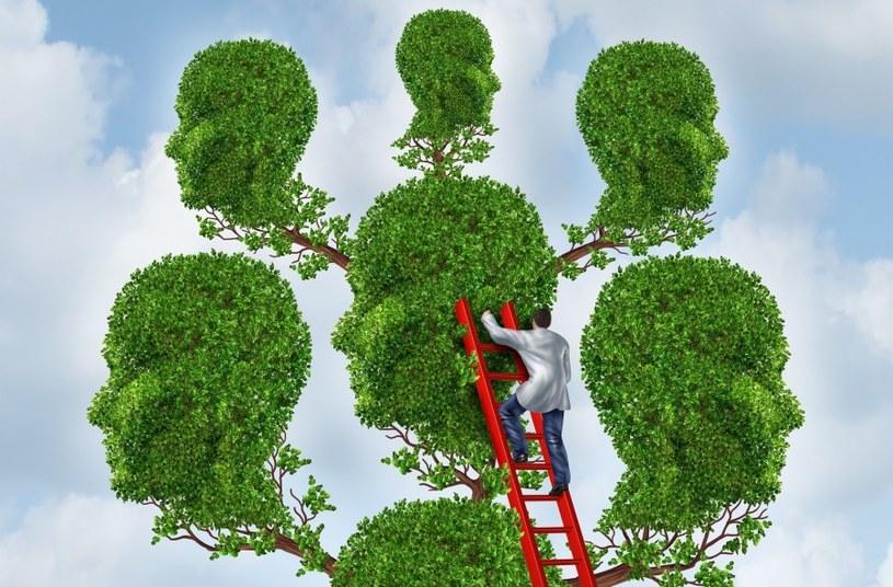 Rysowanie drzewa to frajda /©123RF/PICSEL