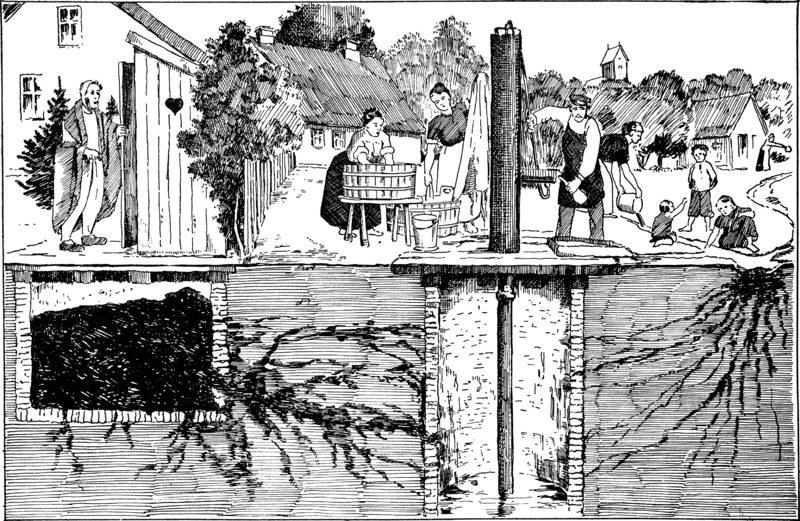 Rysunek ostrzegający przed sposobami rozprzestrzeniania się tyfusu (domena publiczna) /Ciekawostki Historyczne