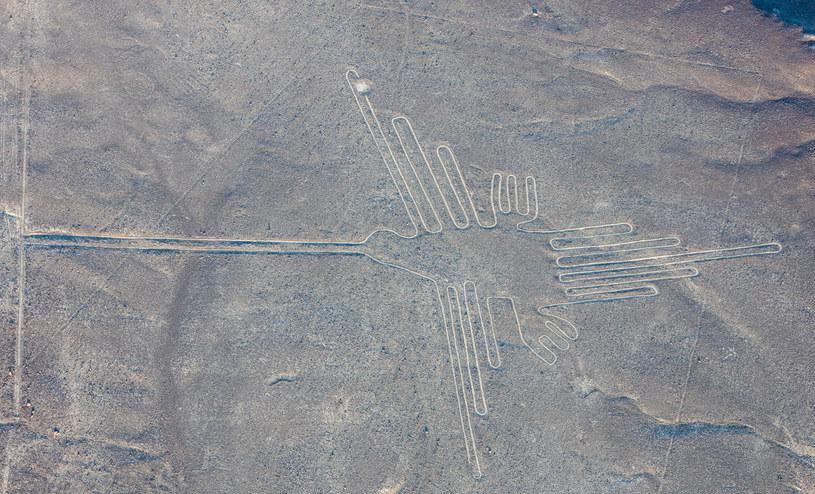 Rysunki z Nazca. Fot. Diego Delso /Wikipedia