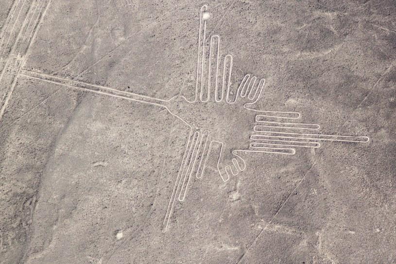 Rysunki z Nazca są starsze niż do tej pory myśleliśmy /123RF/PICSEL
