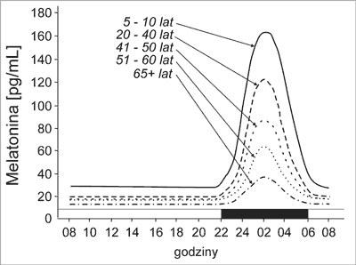 Rytm dobowy melatoniny w różnym wieku (pas ciemny – okres ciemności) /Melatonina AM /INTERIA.PL/materiały prasowe