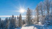 Rytro. Zima w Dolinie Roztoki