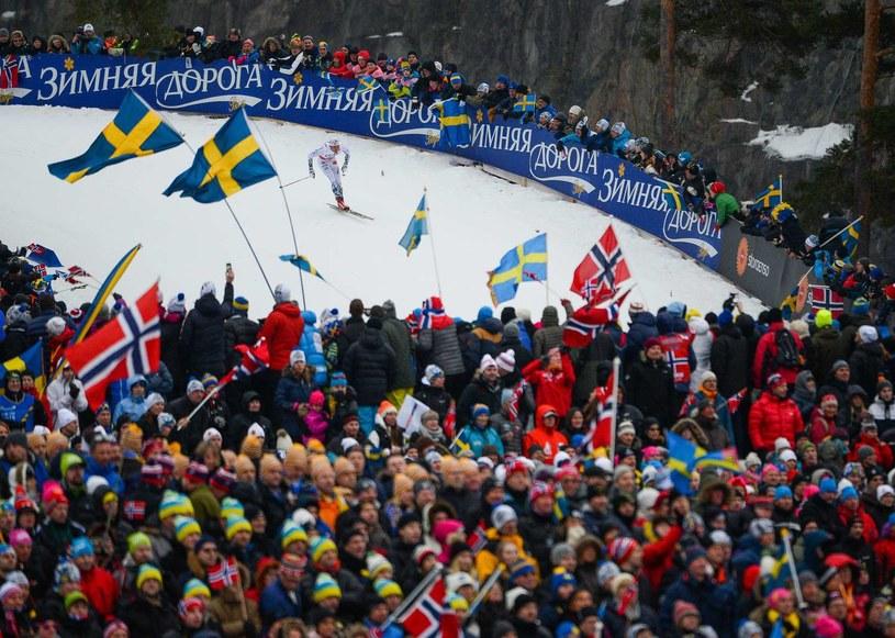 Rywalizacja podczas MŚ w narciarstwie klasycznym w Falun /AFP