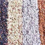Ryż GMO odpowiedzią na plagę HIV?