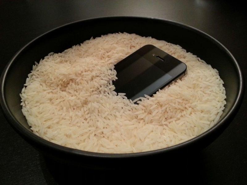ryż suszenie /© Photogenica