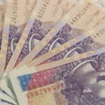 Rząd chce, by dane podatkowe największych firm były publicznie dostępne