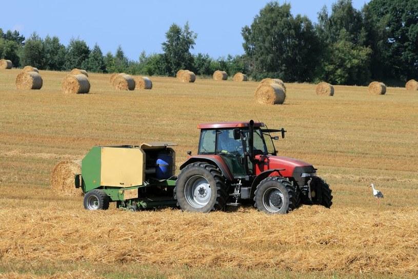 Rząd chce pomóc rolnikom w obniżeniu kosztów produkcji /123RF/PICSEL