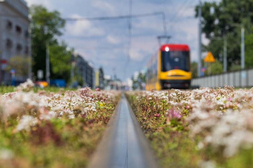 Rząd chce transformacji ekologicznej miast /Arkadiusz Ziółek /East News
