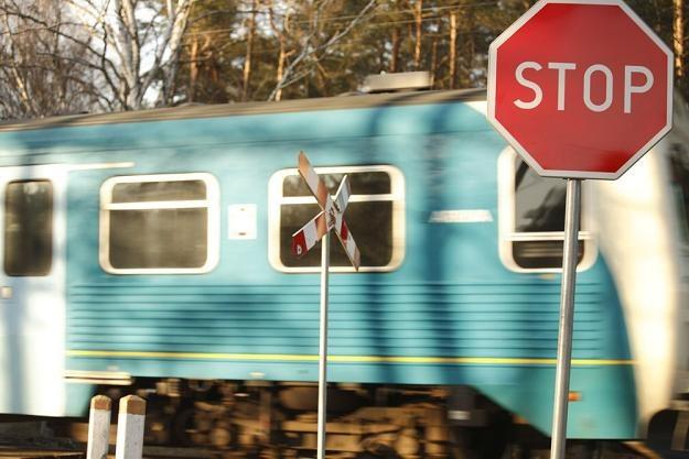 Rząd Donalda Tuska zlikwiduje PKP SA? Fot. Adam Wysocki /Agencja SE/East News