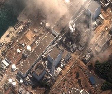 Rząd Japonii: Czarnobyla 2 nie będzie. To znaczy nie powinno być