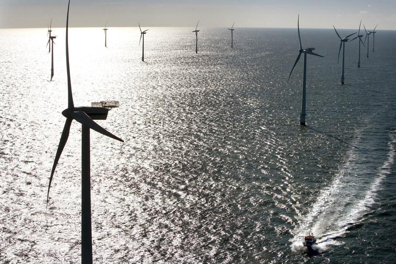 Rząd kontra inwestorzy - spór o cenę dla morskich wiatraków /AFP