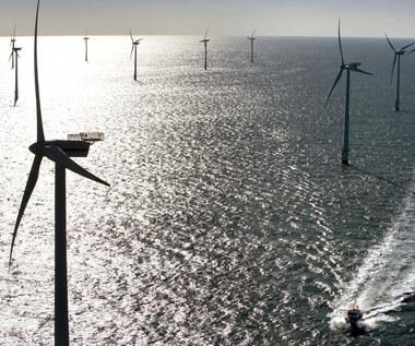 Rząd kontra inwestorzy - spór o cenę dla morskich wiatraków