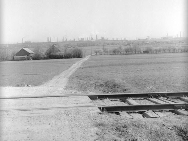 Rząd kwitnących drzew owocowych widziany z przejazdu kolejowego. Na horyzoncie widoczne zakłady przemysłowe Nowej Huty /Z archiwum Narodowego Archiwum Cyfrowego