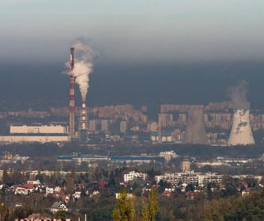 Rząd nie spieszy się w walce ze smogiem