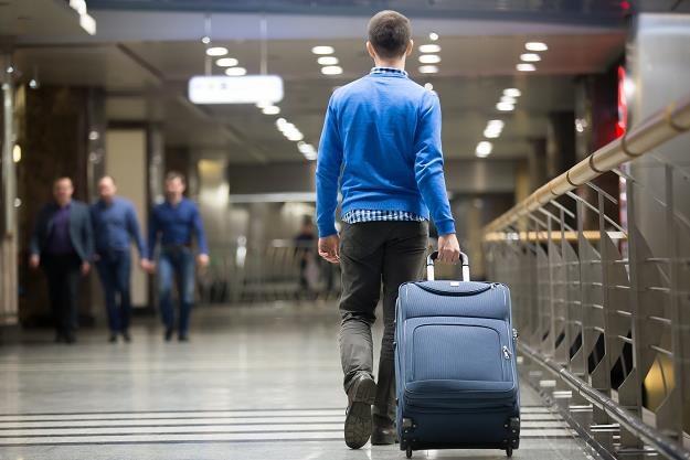 Rząd PiS chce ściągnąć Polaków z zagranicy /©123RF/PICSEL