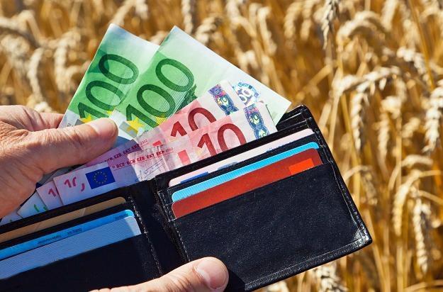 Rząd pokpił sprawę, zapłacą rolnicy! /©123RF/PICSEL