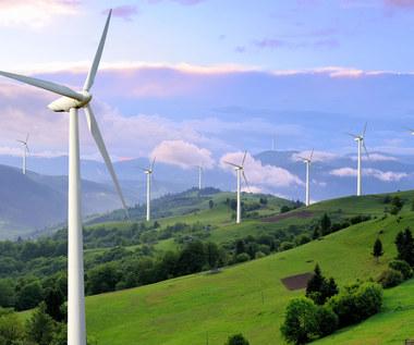 """Rząd przeprosił się z """"zieloną"""" energią"""