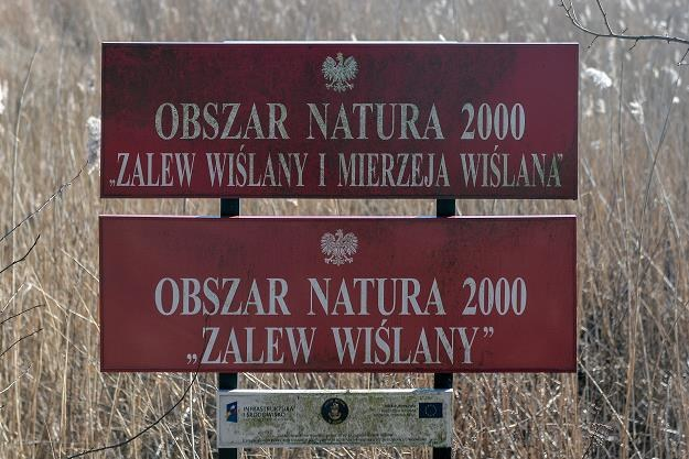 Rząd przyjął uchwałę ws. przekopu przez Mierzeję Wiślaną. Fot. Łukasz Dejnarowicz /FORUM