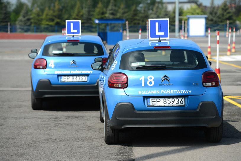 Rząd szykuje zmiany w szkoleniach kierowców /Adam Staśkiewicz /East News