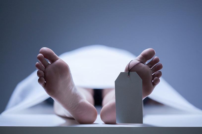 Rząd zapowiada wprowadzenie karty zgonu online /AFP